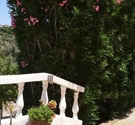 Algarve maisons de vacances de luxe